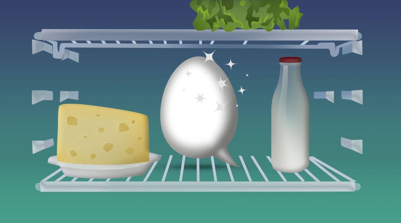 Putze deinen Kühlschrank Tag!